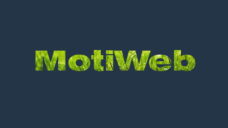 motiweb durable