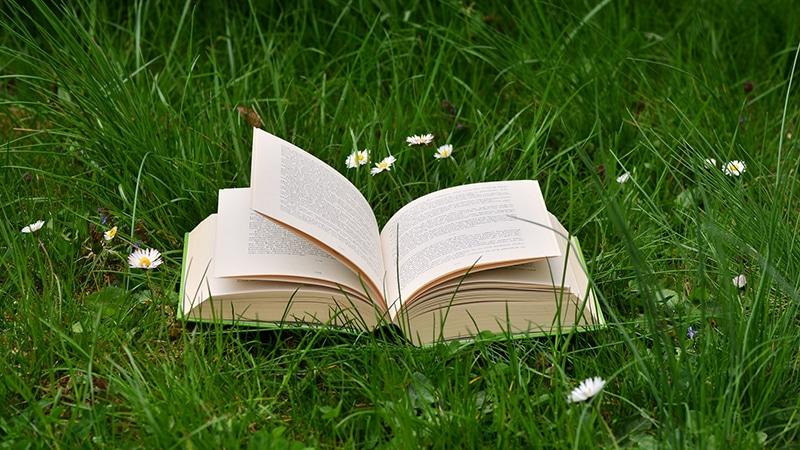 livre sur l'herbe