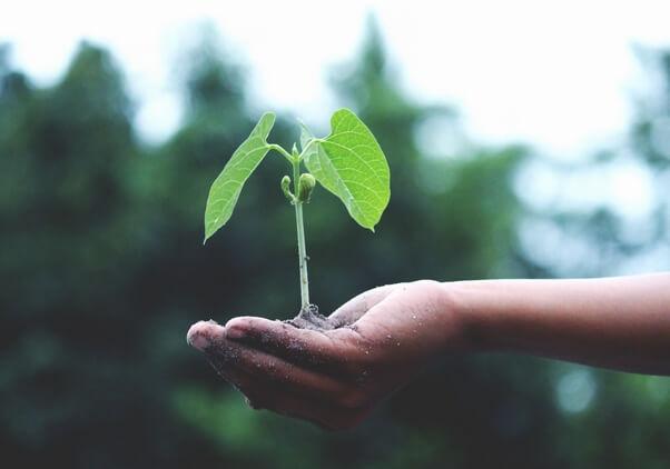 Investissement Entreprise Verte