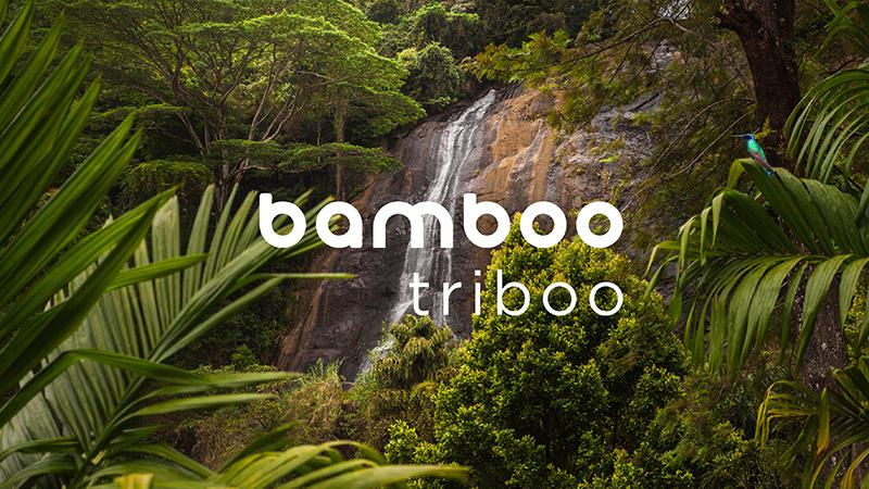 Bamboo triboo